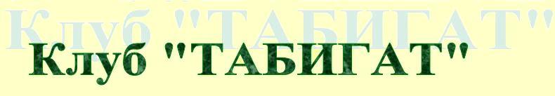 tabigat